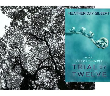 Trial by Twelve, #Appalachian #Christian #Mystery Available for Pre-Order here: http://amzn.to/1ynw3hP